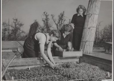 Tuinbouw 1946 - Nationaal Archief, Koos Raucamp/Anefo
